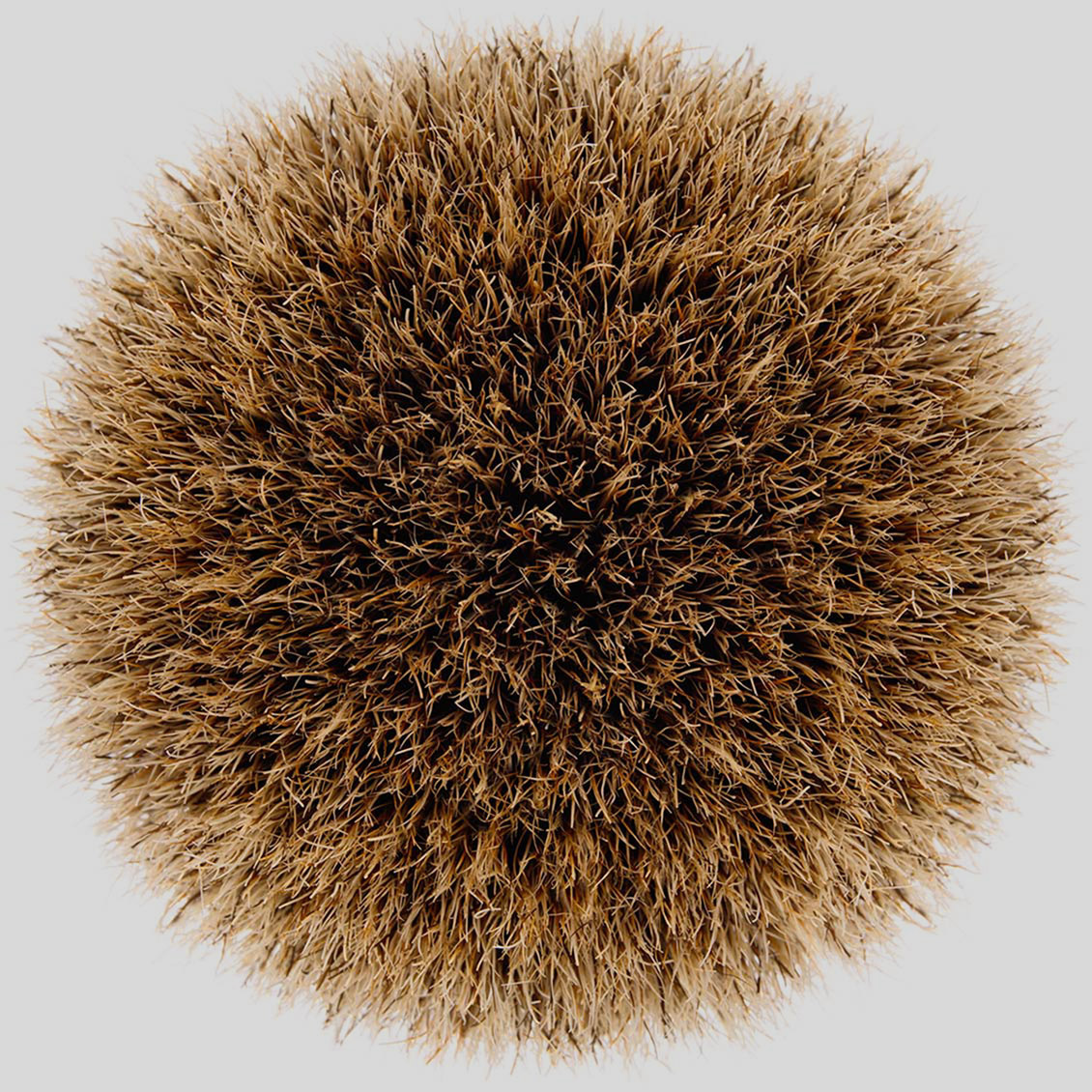 shaving-brush-2015 ©Paul Hampton Photographer Glasgow